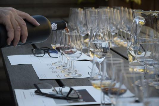 wine-tasting-1324261_960_720.jpg